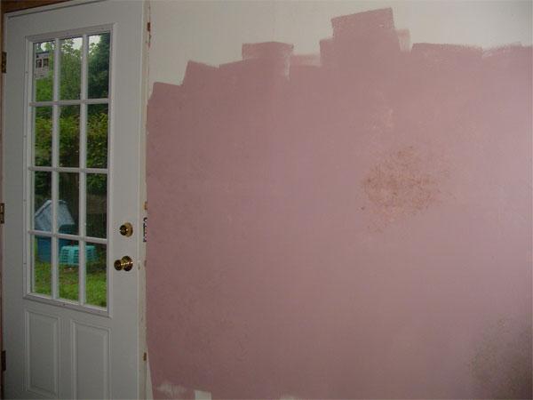 paint-failure-2.jpg