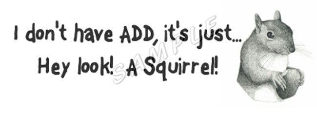 squirrelsticker.jpg